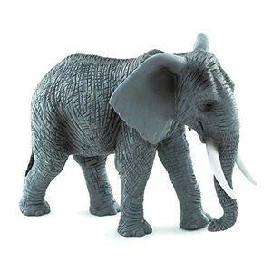 Elefantul african imagine