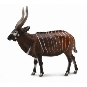 Figurina Antilopa Bongo XL Collecta imagine