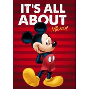 Paturica copii Mickey Red Star ST55888 imagine