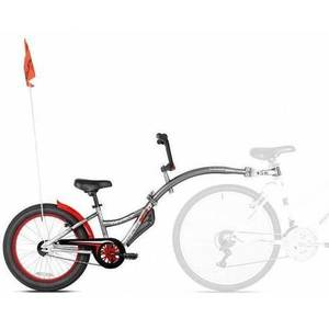 Bicicleta Co-Pilot XT Gri WeeRide WR07XT-GR imagine
